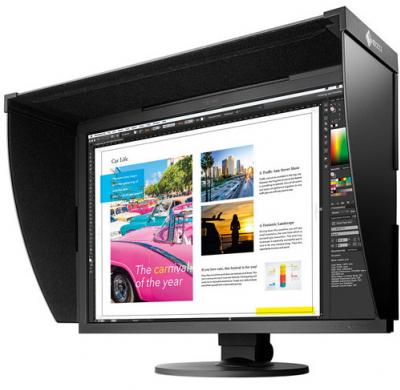 EIZO CG319X ColorEdge 31""