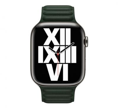 APPLE Remienok 41mm Sequoia Green Leather Link - M/L